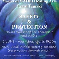 MAORI Workshop for Therapists - Nijmegen June 2017
