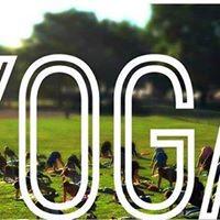 Free Yoga in Montreals Parks  La Fontaine Park