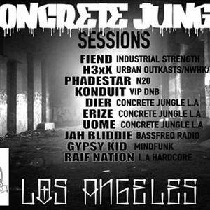 ConCreTe JUnGle Sessions (Renegade L.A)