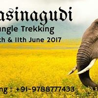 Masinagudi Jungle Trekking June 2017