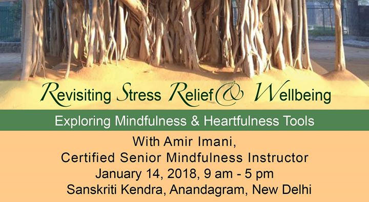 Revisiting Stress Relief & Wellbeing