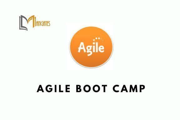 Agile Boot Camp in Dallas TX on Mar 25th-27th 2019