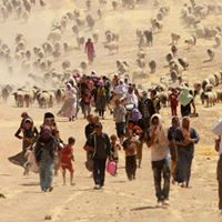 Refugees Immigrants &amp Climate Change