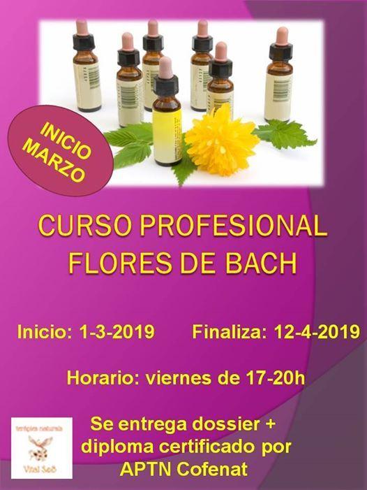 Curso Profesional Flores de Bach