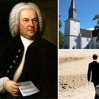 Flere Danser med Bach-Istvan er tilbake