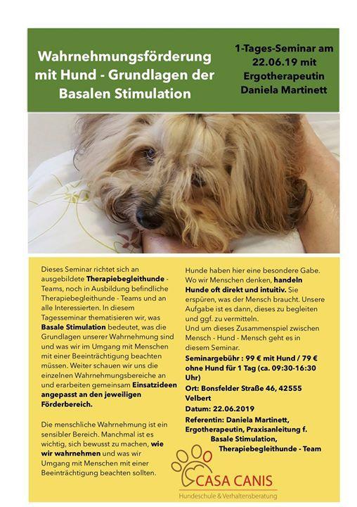 Wahrnehmungsfrderung mit Hund - Basale Stimulation
