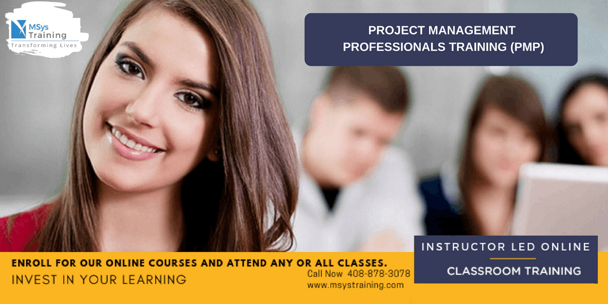 PMP (Project Management) (PMP) Certification Training In Nelson  VA
