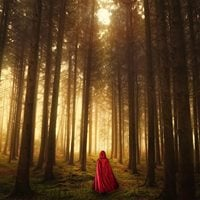 Into The Woods - Auditions