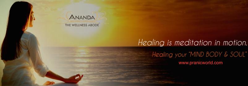 Basic Pranic Healing Course Magarpatta