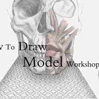 - How to Draw Model workshop