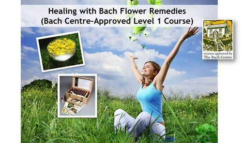 Healing with Bach Flower Remedies (Certified Bach Level 1)