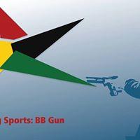 Shooting Sports - BB Gun