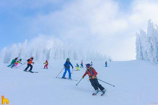 Tabara de schi pentru copii 3-9 februarie