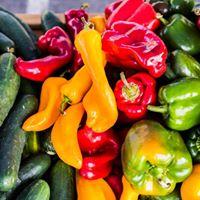 Green Orange Red Loudoun Stations Farmers Market Explosion