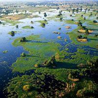 Overland - Delta Chobe &amp Kruger