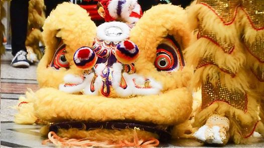 Chinese New Year Year of the Pig