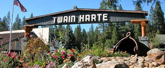 Art And Wine Festival Twain Harte