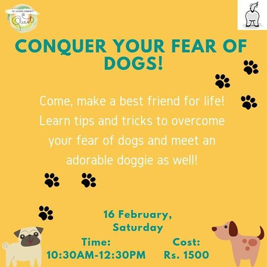 Conquer your Fear of Dogs