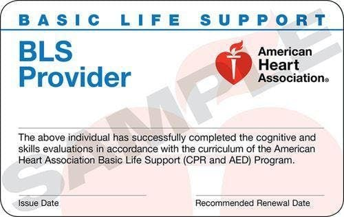 Basic Life Support for Healthcare Training