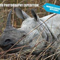 Big four of India Wildlife Photography Camp - Kaziranga March