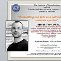 Seminar Dr. Stefan Thor - &quotControlling cell fate and cell number in the nervous system&quot