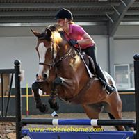 Clear Round Show Jumping &amp Stovies
