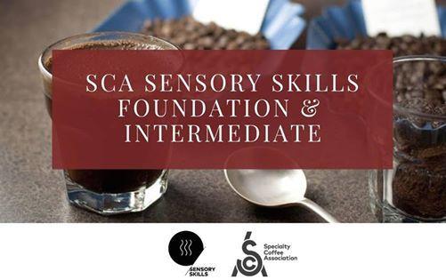 SCA Sensory Skills Foundation & Intermediate