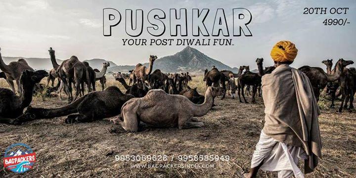 Pushkar Trip Diwali Special