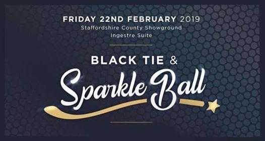 Black Tie & Sparkle Ball