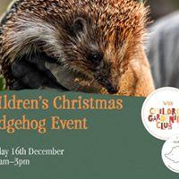 Childrens Christmas Hedgehogs