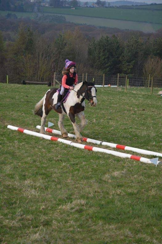 TREC Obstacle Training Clinic