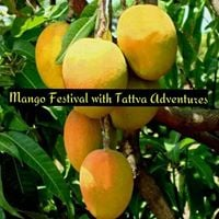 Tattvas Mango Fest Tour On 29th And 30th April 2017