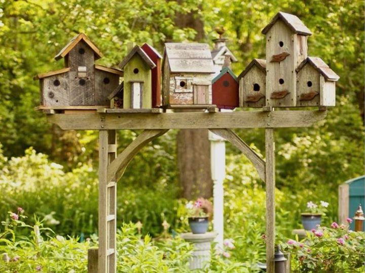 Backyard Birdhouse Workshop