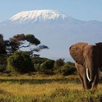 2days Amboseli safari
