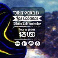 Tour de Snorkel en Los Cobanos sbado 18 de noviembre