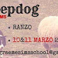 Sheepdog con Graeme Sims