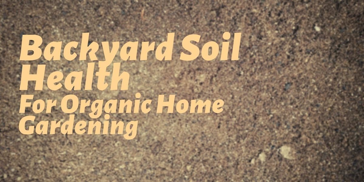 Backyard Soil Health for Organic Home Gardening