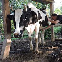Agrotour en La Casona