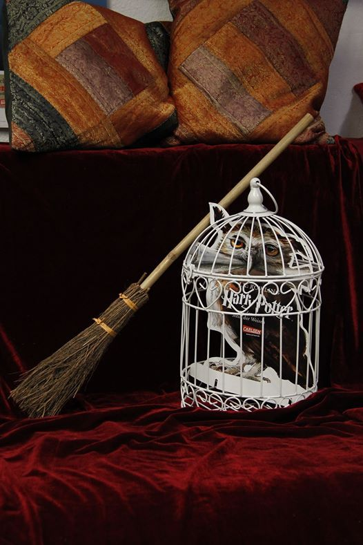 2. Harry Potter Nacht - Packt eure Zauberstbe ein