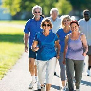 Older Adults Activity Fair