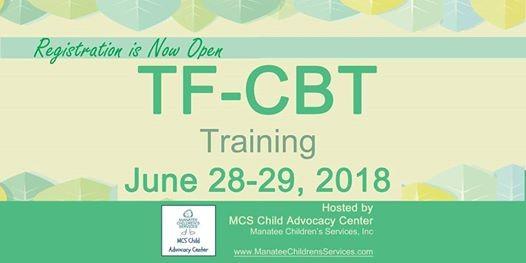 TF-CBT Training at Manatee Community Foundation, Florida