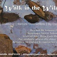Walk in the Wild - 5