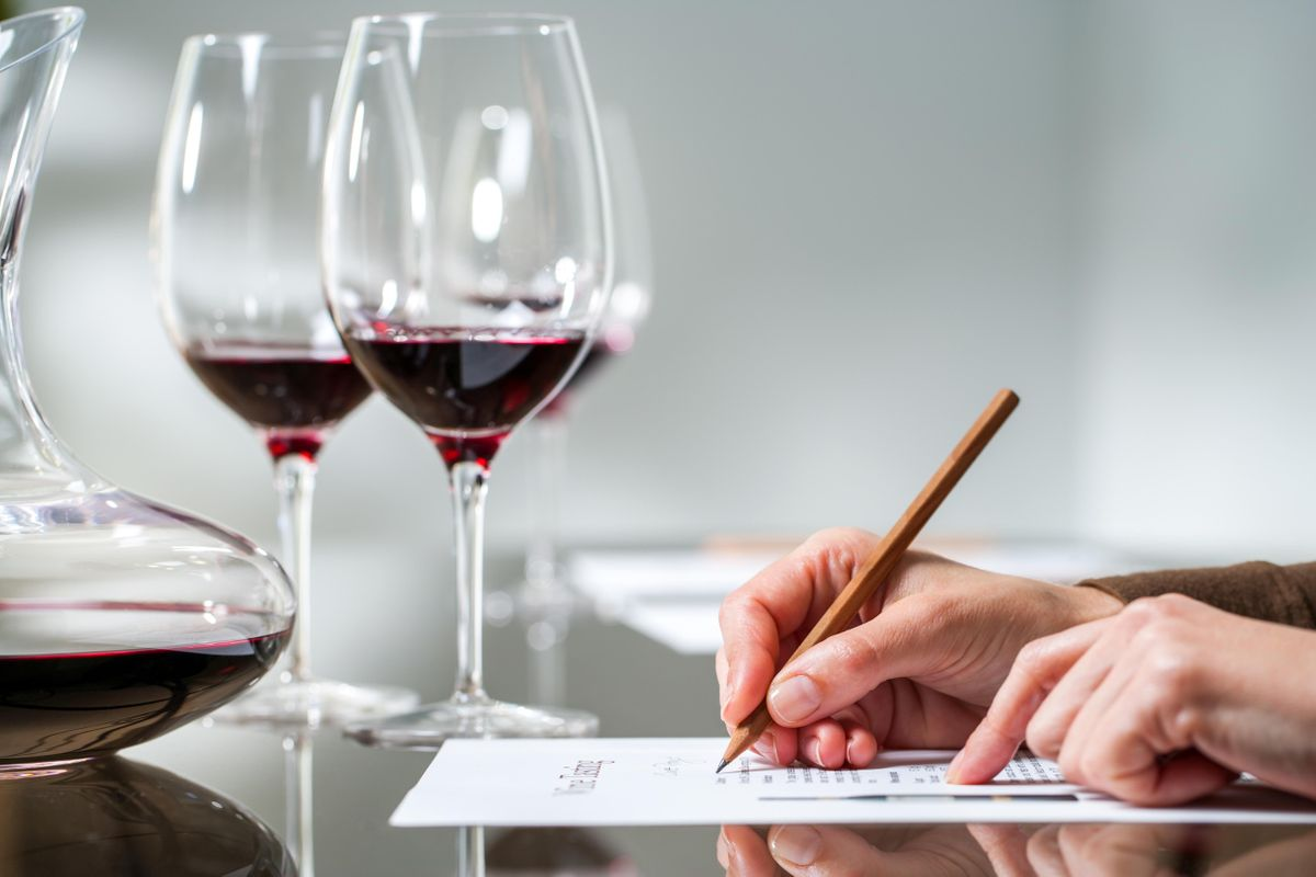 Binology 101 The Basics of Wine Tasting