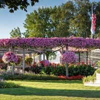 Road Trip to Pleasant View - Proven Winners Display Gardens