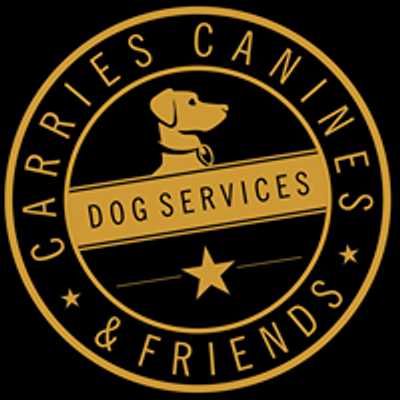 Coventry Dog Walker & Dog Trainer - Carrie's Canines & Friends