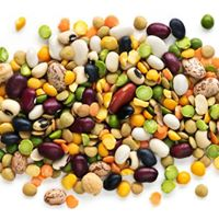 Cooking with Beans and Pulses - Short course