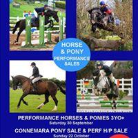 Mullingar Performance Horse &amp Pony Sales September 30