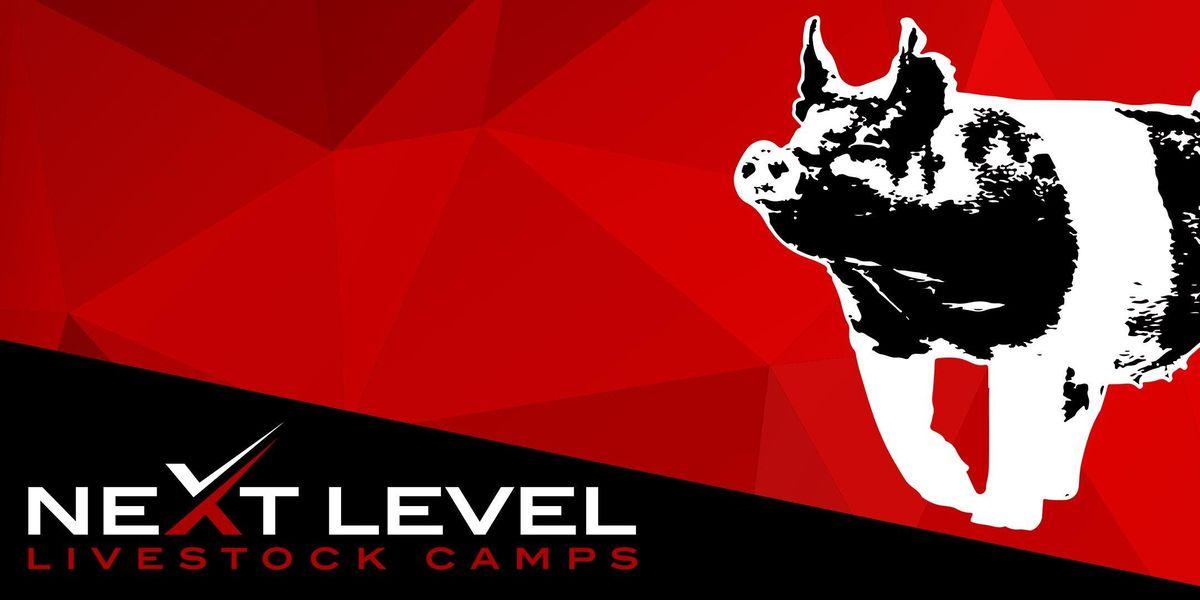 NEXT LEVEL SHOW PIG CAMP  November 23rd24th 2019  Lake Charles Louisiana