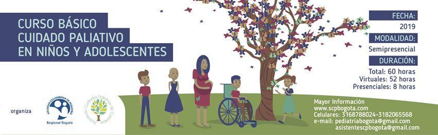 Curso de cuidado paliativos en nios y adolescentes.