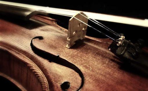 Gita al Museo del Violino di Cremona